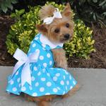 View Image 1 of Blue Polka Dot Dog Dress with Matching Leash by Doggie Design