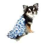 View Image 2 of Blue Rose Dog Dress by Hip Doggie