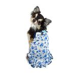 View Image 4 of Blue Rose Dog Dress by Hip Doggie