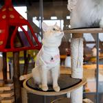 View Image 7 of Boo Turtleneck Cat Shirt by Catspia - Ivory