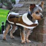 View Image 2 of Brown and Black Faux Leather Bomber Dog Coat Harness and Leash by Doggie Design