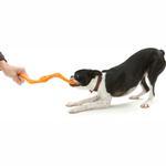 View Image 2 of Bumi Dog Toy - Orange