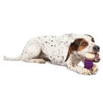 View Image 2 of Busy Buddy Nobbly Nubbly Dog Toy