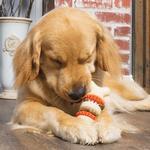 View Image 4 of Busy Buddy Sportsmen Bristle Bone Dental Toy - Blaze Orange