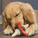 View Image 4 of Busy Buddy Sportsmen Jack Dog Toy - Blaze Orange