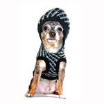 View Image 4 of Candy Striped Hooded Dog Sweater by Hip Doggie - Black