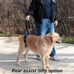 View Image 3 of PetSafe Solvit CareLift Dog Lifting Harness - Full Body