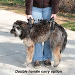 View Image 5 of PetSafe Solvit CareLift Dog Lifting Harness - Full Body
