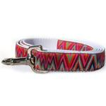 View Image 3 of Ziggy Dog Collar and Leash Set by Diva Dog