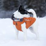 View Image 2 of Cascade Dog Coat - Burnt Orange