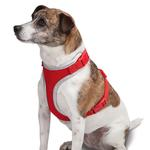 View Image 4 of Casual Canine BestFit Xtra Comfort Mesh Dog Harness - Red