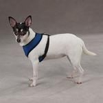 View Image 2 of Casual Canine Mesh Dog Harness - Blue