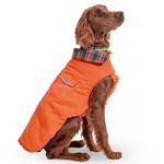 View Image 3 of Orange Field Dog Coat by Up Country