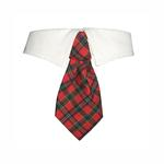 View Image 1 of Christmas Tartan Dog Shirt Collar & Tie