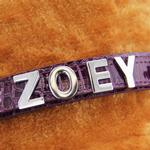 View Image 2 of Chrome Lettering Slider Charms from A-Z - 18MM