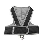 View Image 1 of Cloak & Dawggie Classic Nylon Step N Go Dog Harness - Black