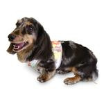View Image 3 of Cloak & Dawggie Step N Go Mesh-Lined Mod Prints Dog Harness - Floral