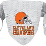 View Image 1 of Cleveland Browns Mesh Dog Bandana