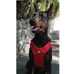 View Image 2 of Clickit Sport Dog Harness by Sleepypod - Strawberry Red