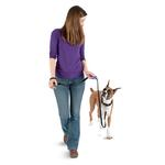 View Image 4 of Clik-R Clip Dog Trainer