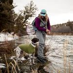 View Image 6 of Climate Changer Fleece Dog Jacket by RuffWear - Cedar Green