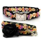 View Image 1 of Coco Maize Small Dog Collar and Leash Set by Diva Dog