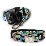 View Image 1 of Coco Blue Small Dog Collar and Leash Set by Diva Dog