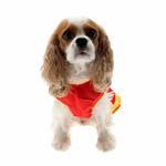 View Image 3 of Collegiate Cheerleader Dog Costume