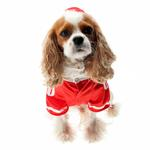 View Image 4 of Collegiate Football Player Dog Costume - Red