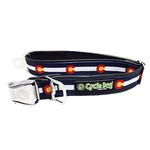 View Image 1 of Colorado Metal Latch Dog Collar by Cycle Dog