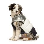 View Image 2 of Colorblock Puffer Dog Coat by fabdog® - Silver, White, and Navy