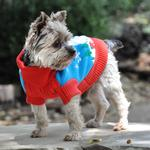 View Image 3 of Holiday Snowman Ugly Dog Sweater by Doggie Design