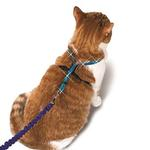 View Image 1 of Come With Me Kitty Leash/Harness - Sparkle Blue