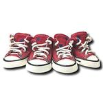 View Image 1 of Converse Dog Shoes by Parisian Pet - Red with Blue Stars