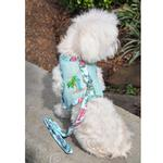 View Image 4 of Cool Mesh Dog Harness with Leash by Doggie Design - Surfboards and Palms