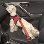 View Image 4 of Simple Dog Seatbelt Leash by Puppia
