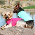 View Image 2 of Cotton Dog Tank by Doggie Design - Teal