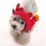 View Image 1 of Crab Dog Hat by DOGO