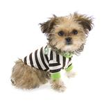View Image 5 of Crown Stripe Dog T-Shirt by Hip Doggie