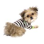 View Image 6 of Crown Stripe Dog T-Shirt by Hip Doggie