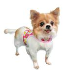 View Image 2 of Daisy Dog Harness - Pink