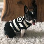 View Image 3 of Dallas Dogs Black and White Dog Sweater Dress