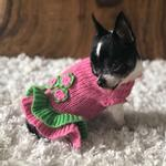 View Image 4 of Dallas Dogs Girly Girl Dog Sweater Dress