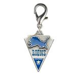 View Image 1 of Detroit Lions Pennant Dog Collar Charm