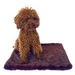 View Image 1 of Bella Dog Blanket by The Dog Squad - Driftwood