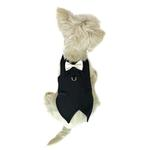 View Image 1 of The DogFather Pinstripe Dog Tuxedo