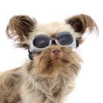 View Image 2 of Doggles - ILS Gunmetal Gray Frame with Smoke Lens