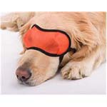 View Image 2 of Doggles Mesh Eyewear - Orange