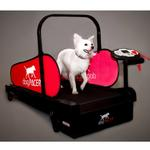 View Image 1 of DogPacer Dog Treadmill - Minipacer - Includes Shipping