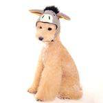 View Image 1 of Donkey Dog Hat by DOGO